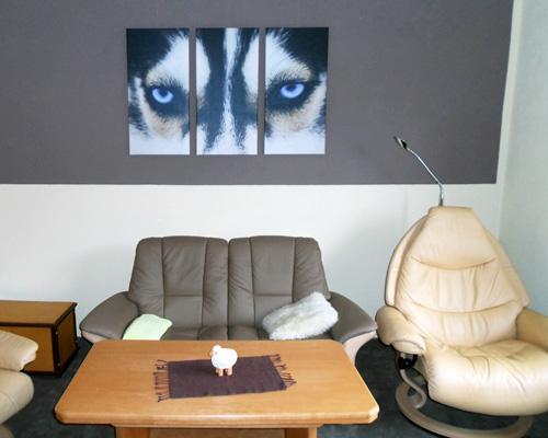 Dreigeteiltes Wandbild mit Augen eines Husky